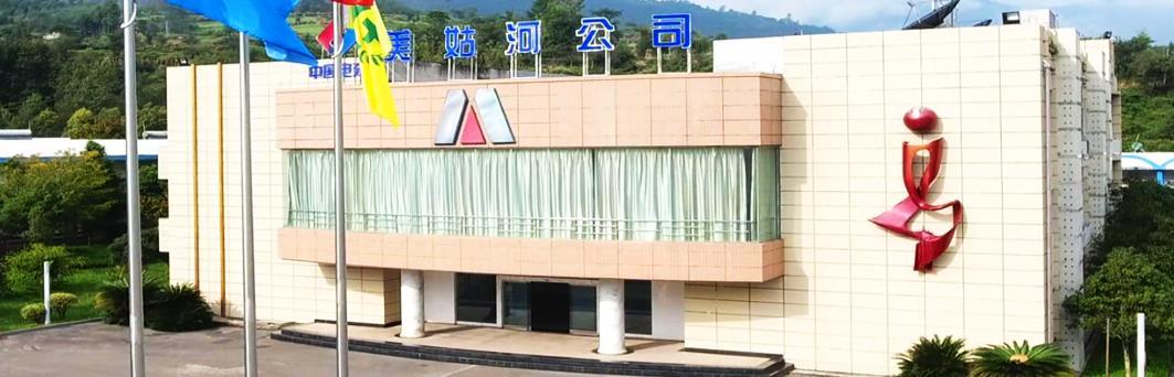 四川美姑河水电开发有限公司